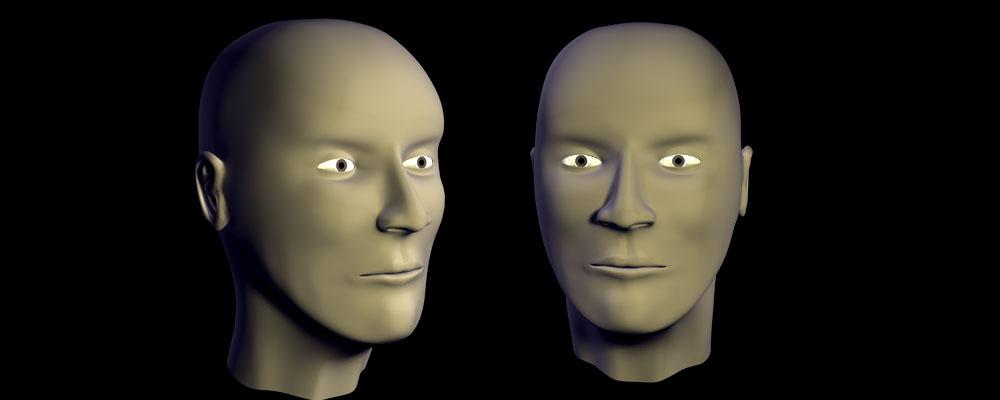 Character Head (2010)